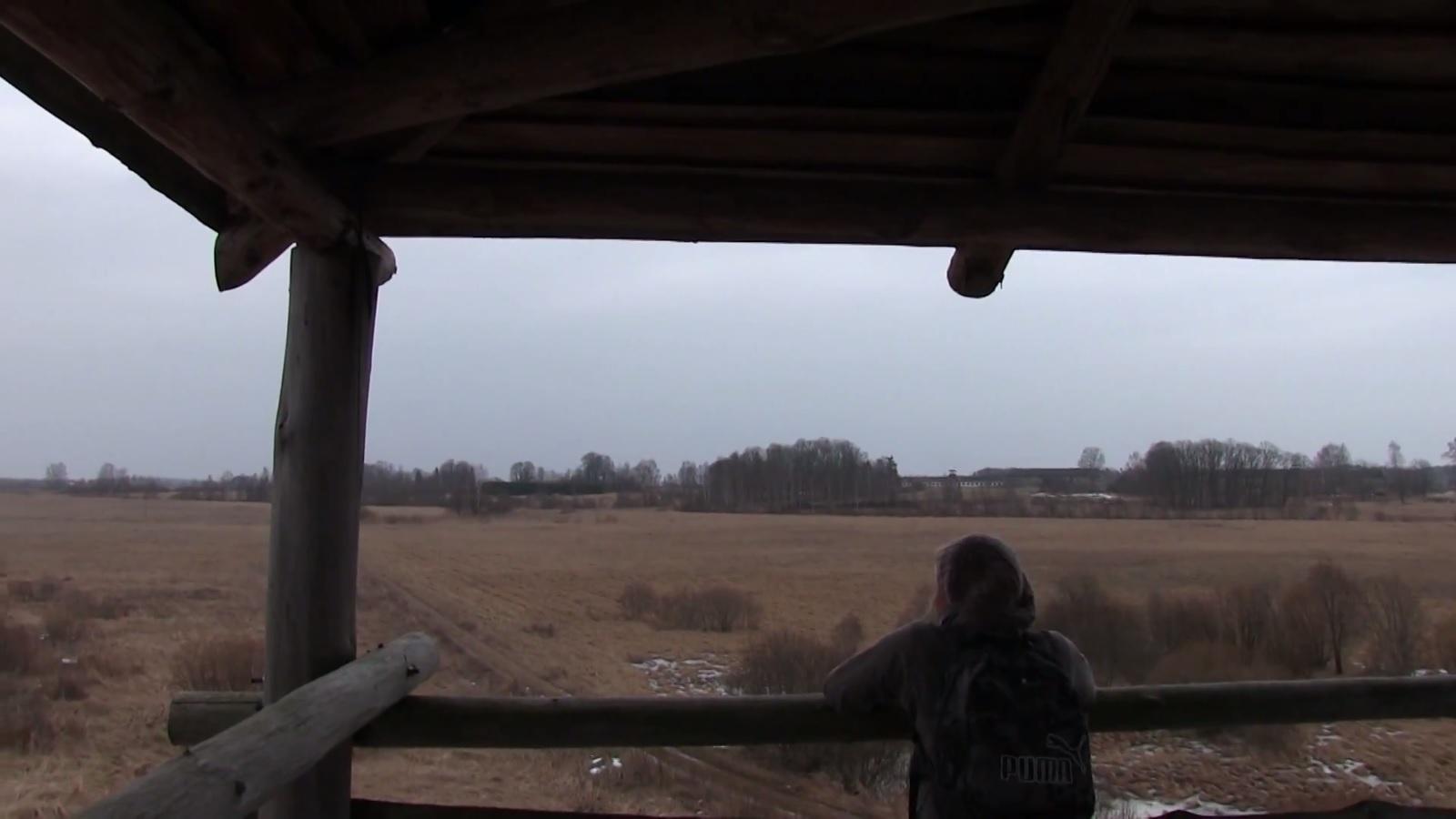 Aardla poldri linnuvaatlustornis