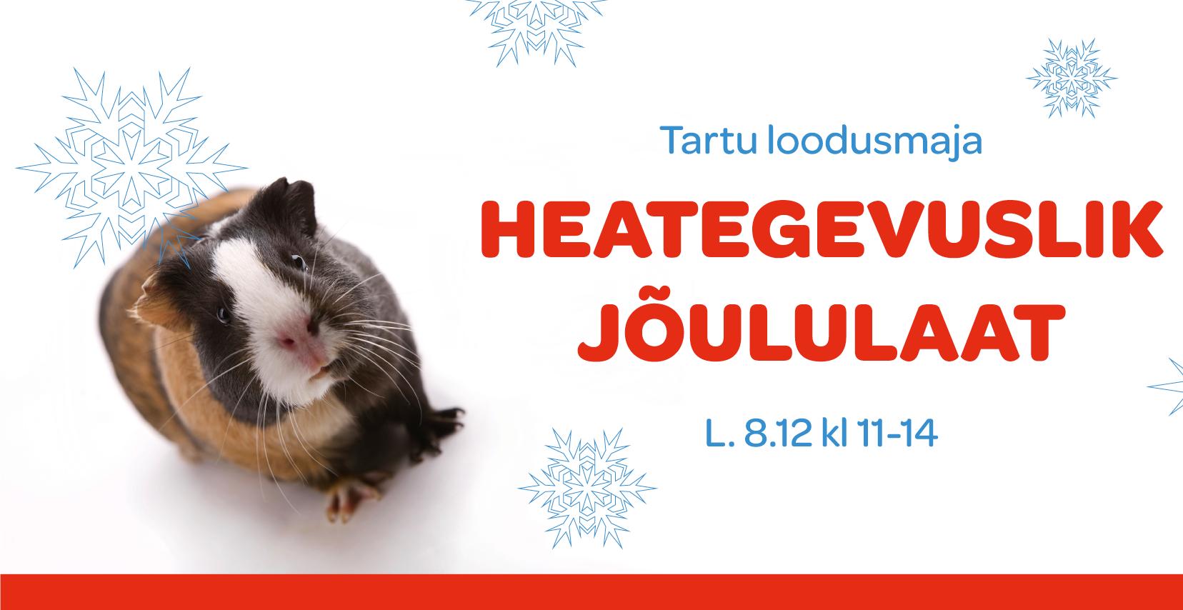 Tartu loodusmaja heategevuslik jõululaat 8.12.2018