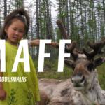 """MAFF filmiõhtu """"Jõulusaar ja kookosevargad"""" ja """"Valge põhjapõder"""" 10.12.2019"""