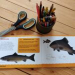 A fun and creative arts and crafts workbook for children