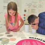 Tartu loodusmajas avanes tänasest põnevat bakterimaailma tutvustav näitus