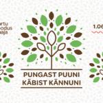 """Sel suvel saab loodusmajas lahendada avastusrada """"Pungast puuni, käbist kännuni"""" 01.06-01.09.2021"""