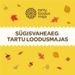 Sügisvaheaja tegevused Tartu loodusmajas 25.-29.10.2021
